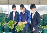 윤해진 경남본부장, 통영 용남농협 시금치 경매장 방문