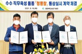 충북농기원, '청풍찰수수 농가보급' 확대